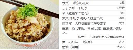 激ウマ☆サバご飯
