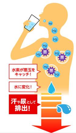 水素水の効果