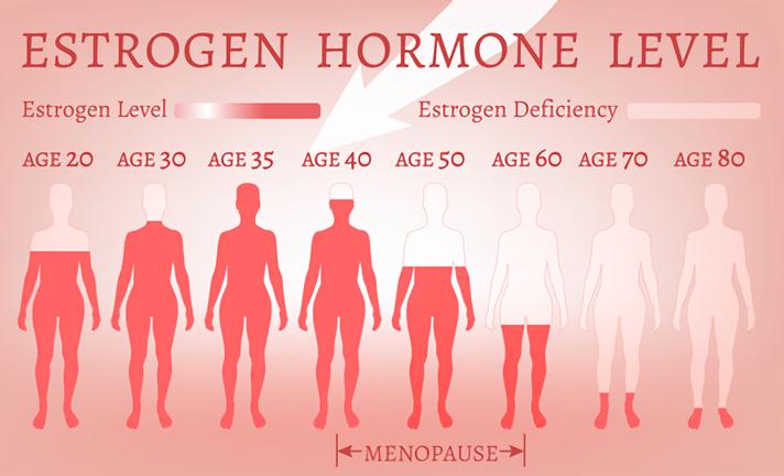 ホルモンと老化